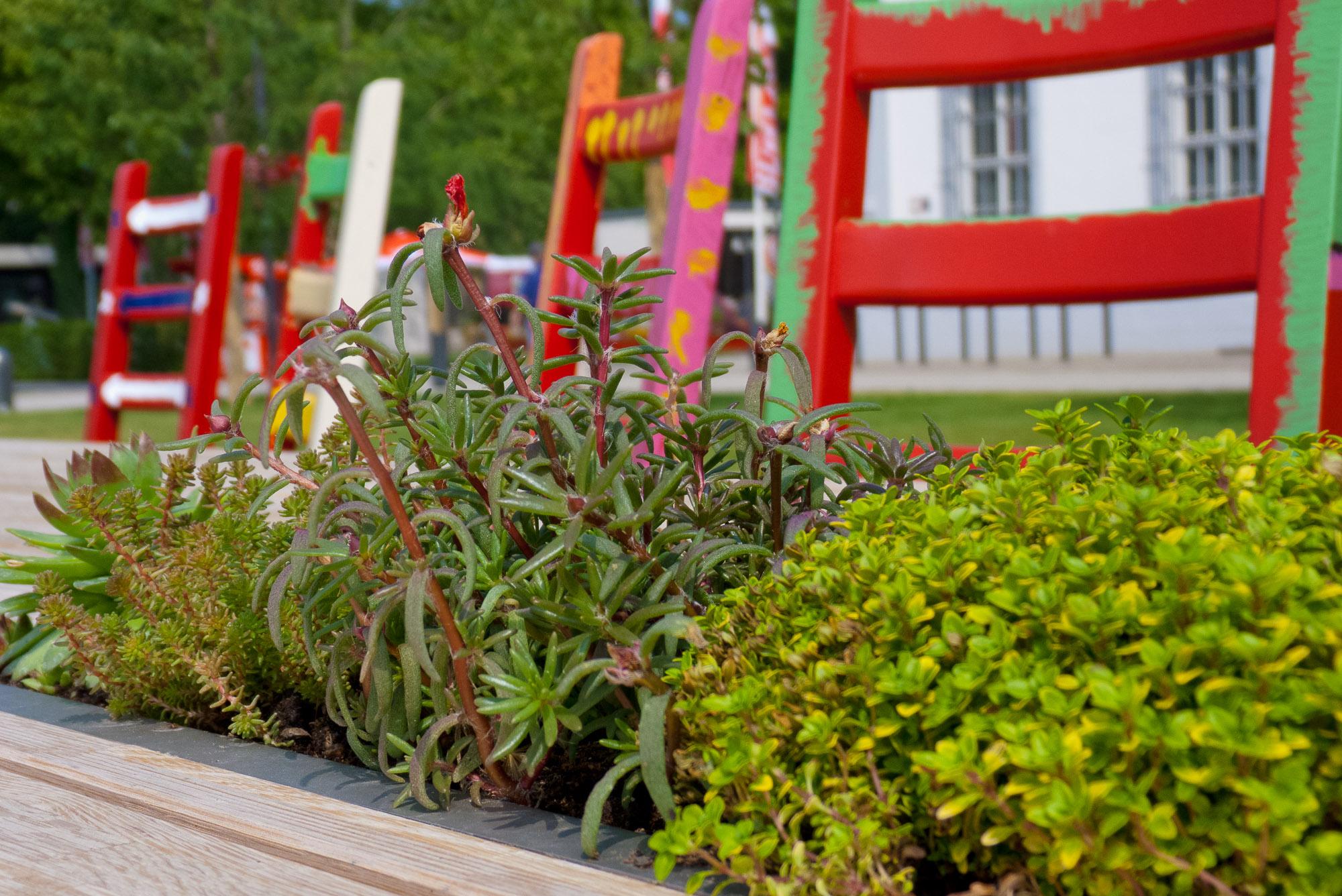 2011-05-11_buga-011