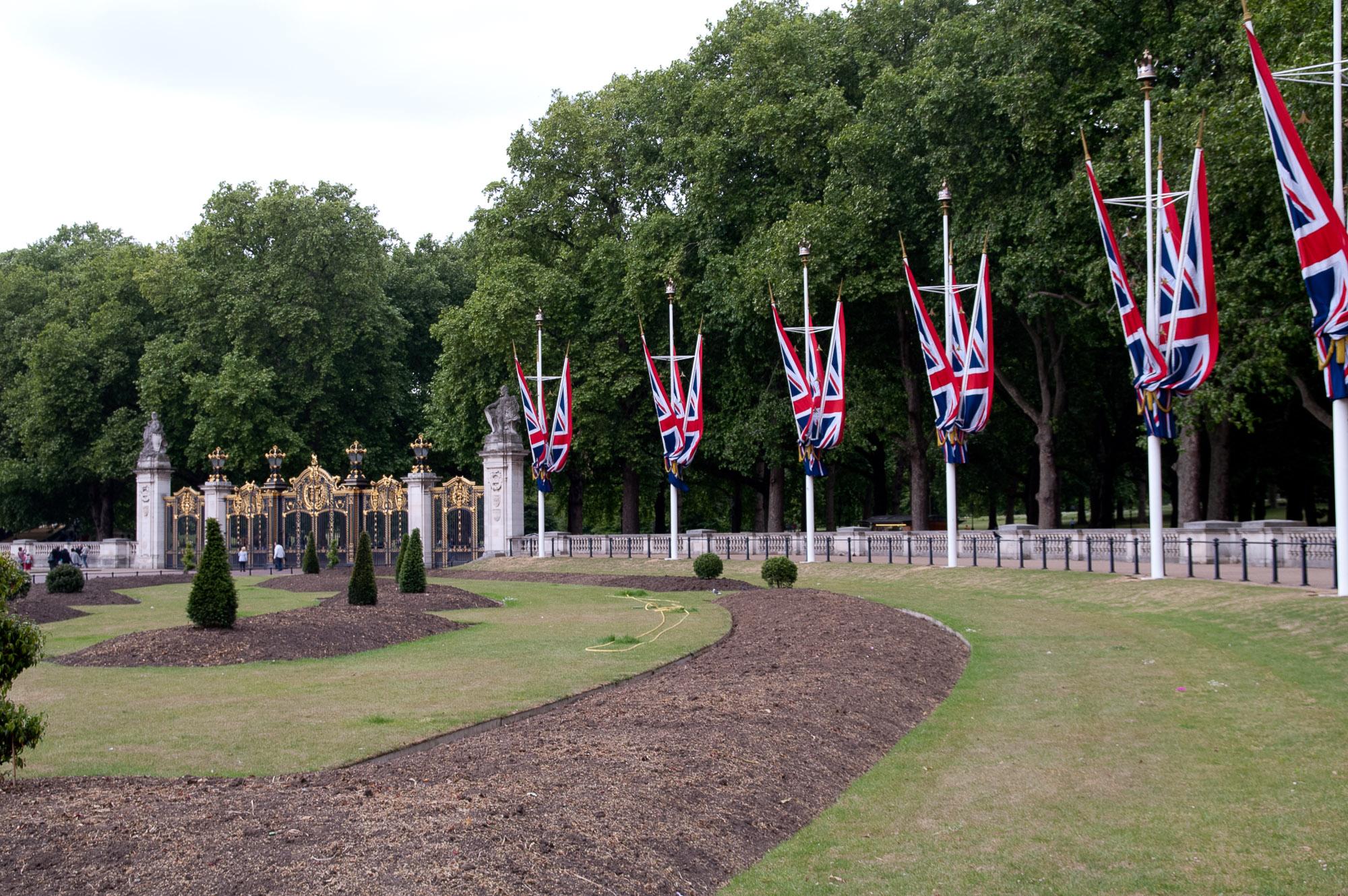 Union Jack V